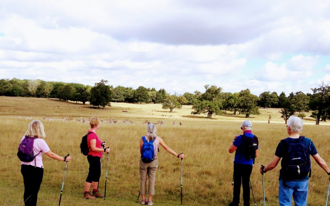 Everybody's Talking Nordic Walking @The Coddenham Centre