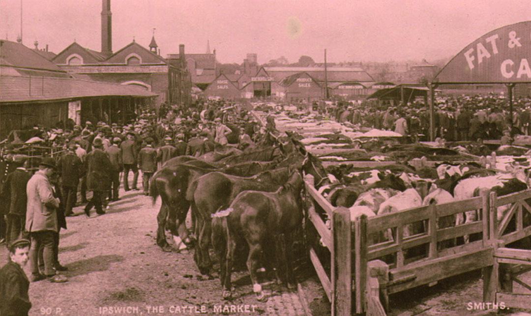 Old photo of Ipswich Cattle Market