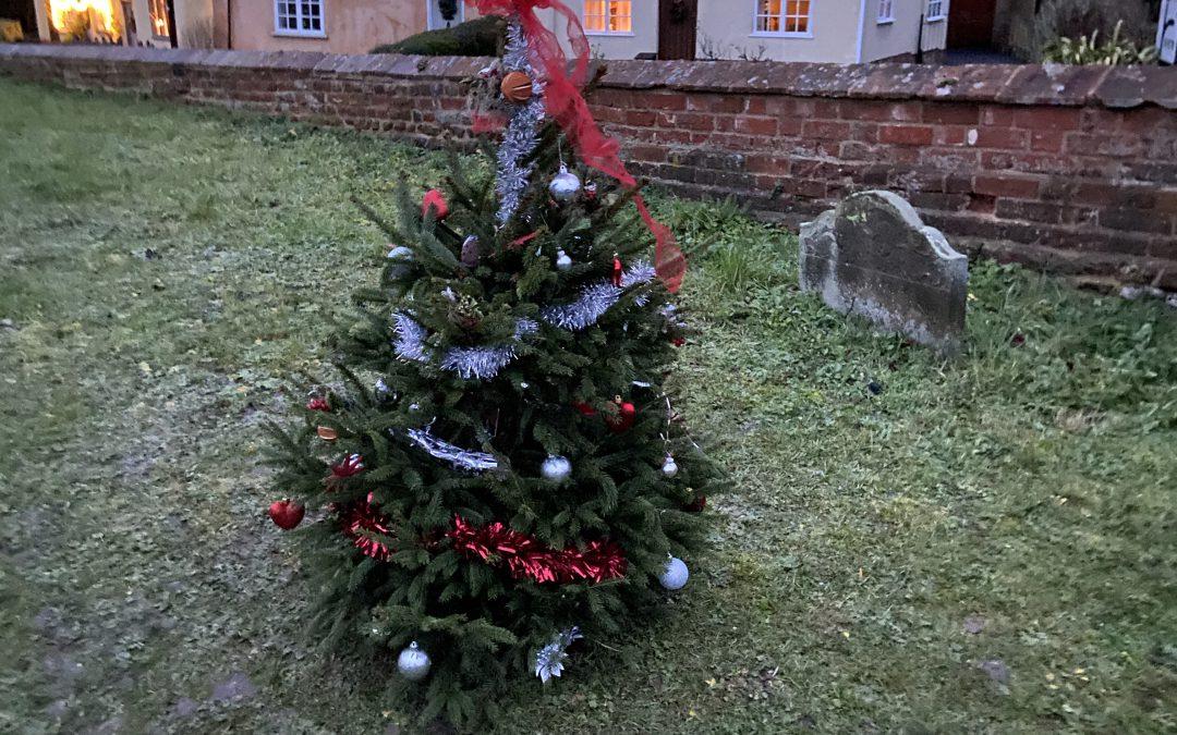 Churchyard Christmas Trees at St Mary's